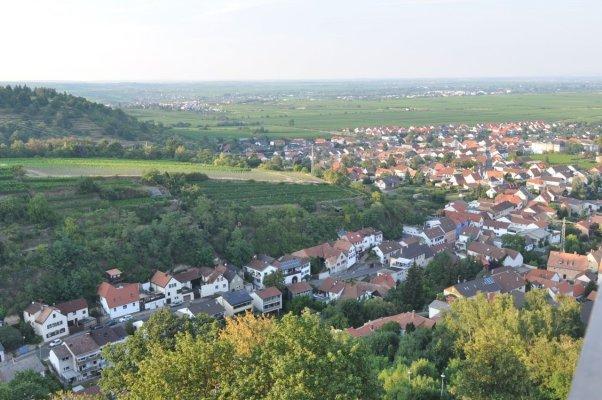Sicht_ueber_die_Waldstrasse_nach_Norden